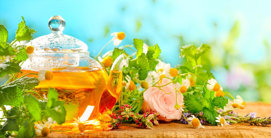 prodotti naturali alla fiera di Riccione Expo Bio